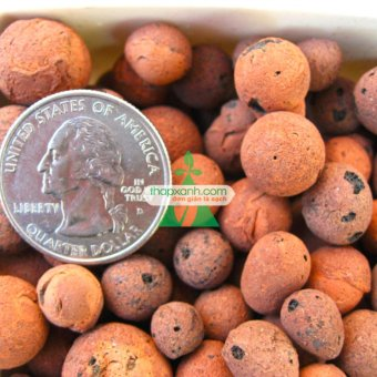 Hạt đất nung, Sỏi nhẹ, đất sét nung (10~15mm) - 5kg