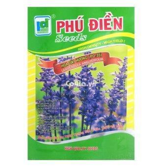 Hạt giống hoa Oải hương (PD.35)