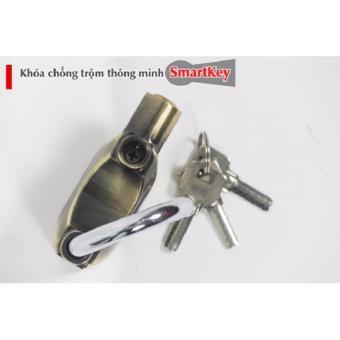 Đang có các sản phẩm khóa phòng ngừa trộm cắp nào vượt bậc nhất hiện nay