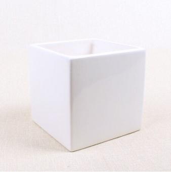 OJ mini meaty plant ceramic flower pot - intl