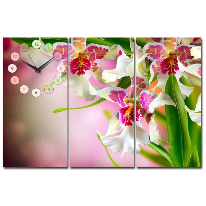 Nơi bán Tranh đồng hồ Suemall HL140708 (Hoa lan tím)