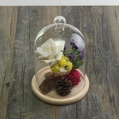 Nơi Bán Transparent Glass Bell Dome Flower Immortal Preservation Vase With Wooden Base – intl  AutoLeader