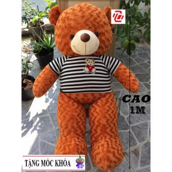 Gấu bông Teddy Cao Cấp khổ vải 1m2 Cao 1M màu Cam