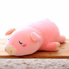 Gối ôm heo bông màu hồng dài 55cm-OHNTE55 (nhà bán hàng Diabrand)