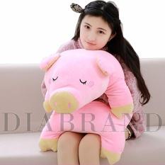 Gối ôm heo bông màu hồng dài 70cm-OHNTE70 (nhà bán hàng Diabrand)