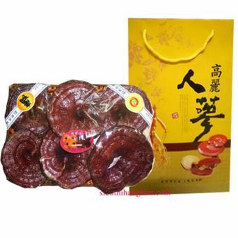 Nấm linh chi Đỏ Thượng Hạng Korea 1Kg - TRỢ GIÁ MẠNH