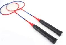 So Sánh Giá Bộ 2 vợt cầu lông và 2 quả cầu Mishop (Trắng)