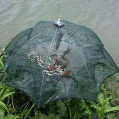 Lưới Bát Quái Bắt Cá Kiểu Mới