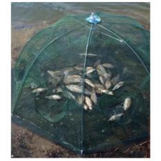 Lưới Đánh Bắt Cá Bát Quái - 8 Cửa Công nghệ mới