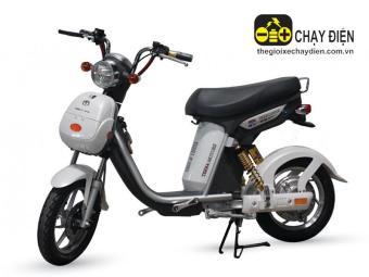Xe đạp điện Nijia Terra Motors 48V - 12A