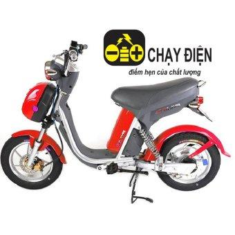 Xe đạp điện Ninjia phanh đĩa đồng hồ điện tử (Đỏ)