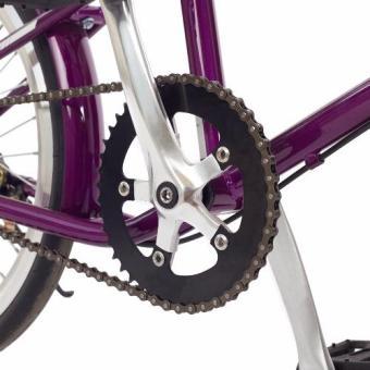 Xe đạp FORNIX MINI FIXEDGEAR- BF300 20'' sườn sắt (Tím)