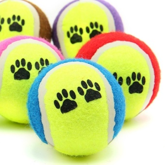 Cocotina Tennis Ball Pet Dog Puppy Funny Playing Inflating Toy -intl - 8602926 , OE680OTAA887HMVNAMZ-15819019 , 224_OE680OTAA887HMVNAMZ-15819019 , 573300 , Cocotina-Tennis-Ball-Pet-Dog-Puppy-Funny-Playing-Inflating-Toy-intl-224_OE680OTAA887HMVNAMZ-15819019 , lazada.vn , Cocotina Tennis Ball Pet Dog Puppy Funny Playing I