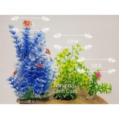 Giá Niêm Yết Combo cây cảnh nhựa trang trí hồ cá ngẫu nhiên 2 size S& 1 size M