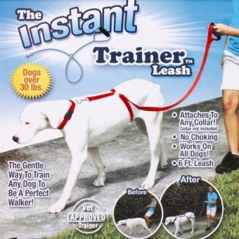 Instant Trainer Dog Leash Trains Dogs 30 Lbs Stop Pulling TvDogwalkHot - intl - 8605085 , OE680OTAA8K2RDVNAMZ-16636430 , 224_OE680OTAA8K2RDVNAMZ-16636430 , 546840 , Instant-Trainer-Dog-Leash-Trains-Dogs-30-Lbs-Stop-Pulling-TvDogwalkHot-intl-224_OE680OTAA8K2RDVNAMZ-16636430 , lazada.vn , Instant Trainer Dog Leash Trains Dogs 30 L