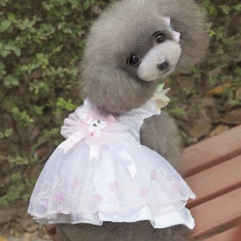 White Pet Clothes Small Dogs Pet Clothes Girls(Size L) - intl