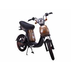 Xe đạp điện Nijia Terra Motors